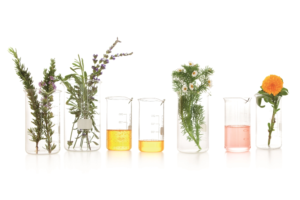 1 Bio-Oil_photography_Plants_and_oils_in_beakers